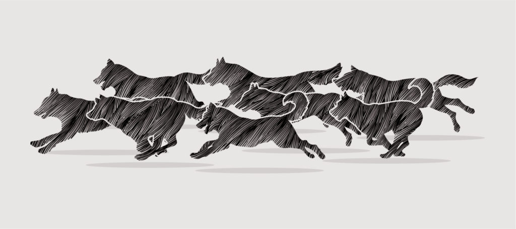 illustration of dogs running