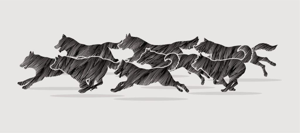 illustration of dogs running