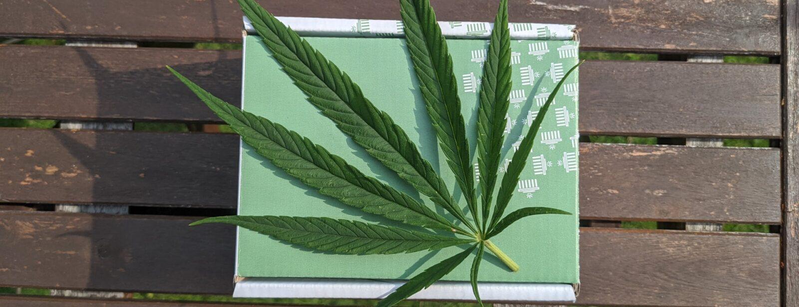 DUI and medical marijuana